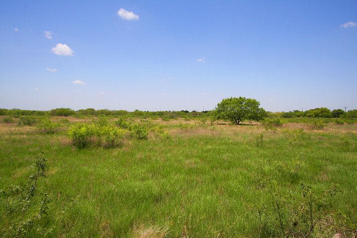 Abundant land, lush greenery
