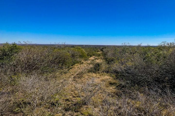 SOLD* 35 79 Acres Hunting Property in Live Oak County - Desert