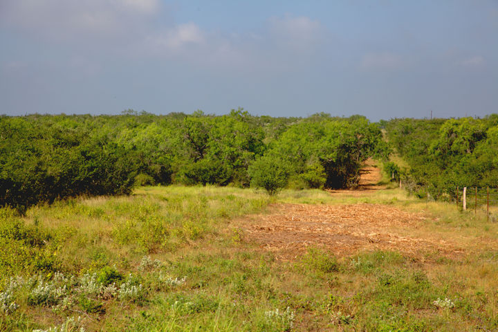 vacant land in George West, TX