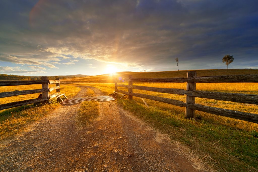 Farm vs. Ranch: What's the difference?