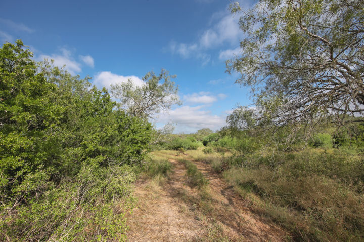 1170  FM 889, George West, Texas 78022